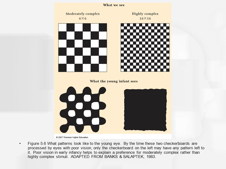 Figure 5.6 What patterns look like to the young eye. By the time these two checkerboards are processed by eyes with poor vision, only the checkerboard