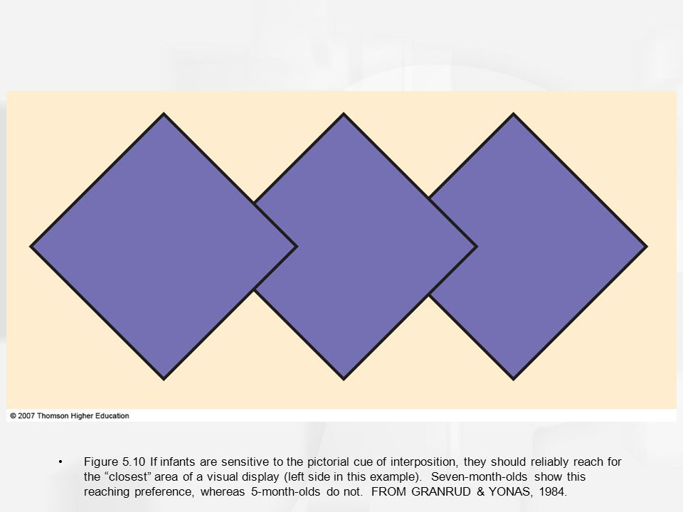 """Figure 5.10 If infants are sensitive to the pictorial cue of interposition, they should reliably reach for the """"closest"""" area of a visual display (lef"""