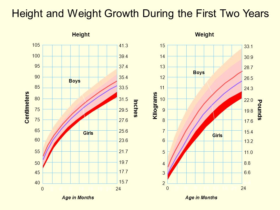 Height and Weight Growth During the First Two Years HeightWeight Age in Months 03691215182124 105 100 95 90 85 80 75 65 60 55 50 45 40 41.3 39.4 37.4