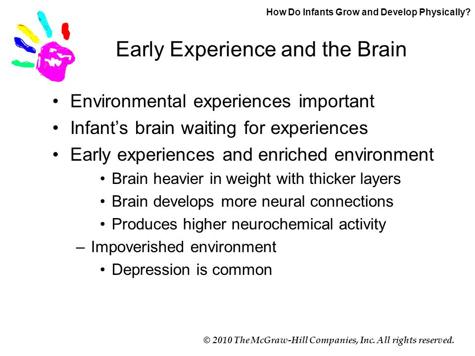 © 2010 The McGraw-Hill Companies, Inc. All rights reserved. Early Experience and the Brain Environmental experiences important Infant's brain waiting