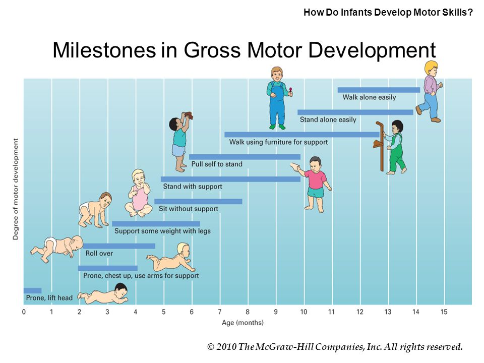 © 2010 The McGraw-Hill Companies, Inc. All rights reserved. How Do Infants Develop Motor Skills? Milestones in Gross Motor Development
