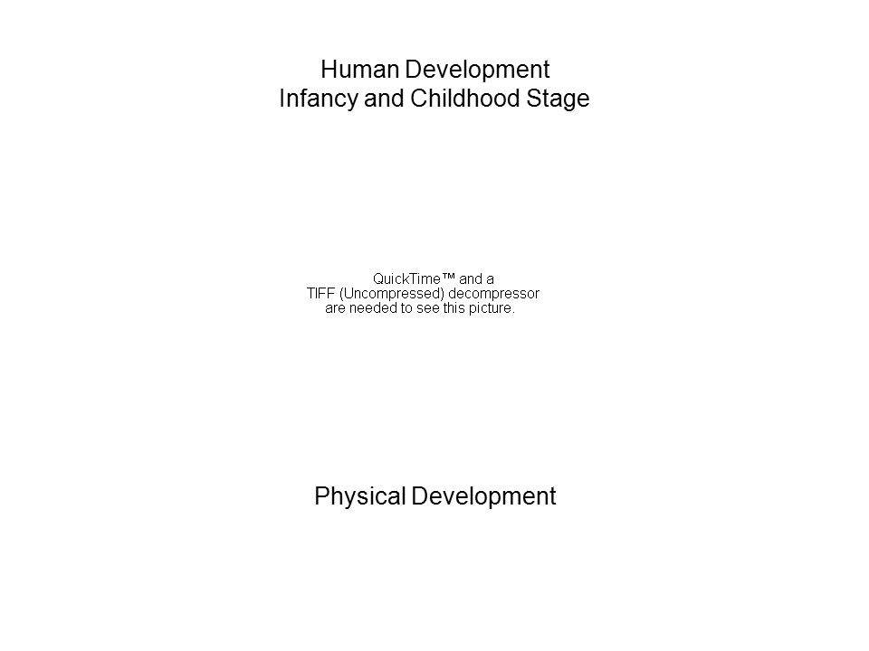 Human Development Infancy and Childhood Stage Physical Development