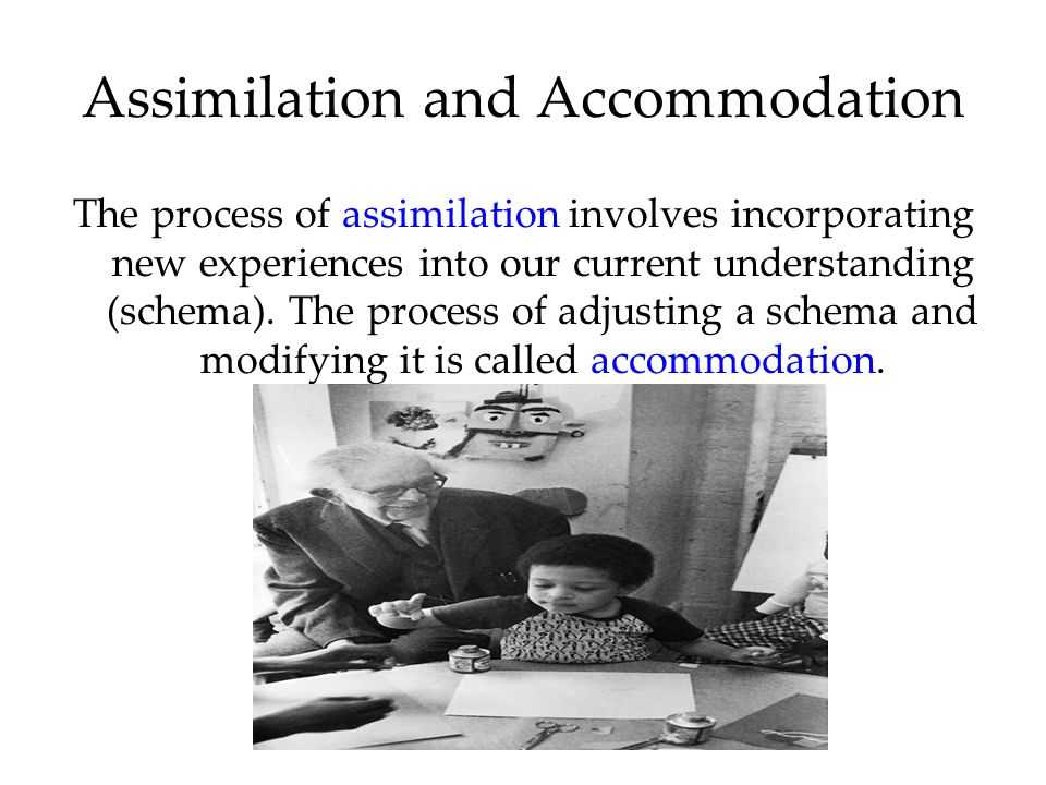 Assimilation and Accommodation The process of assimilation involves incorporating new experiences into our current understanding (schema).