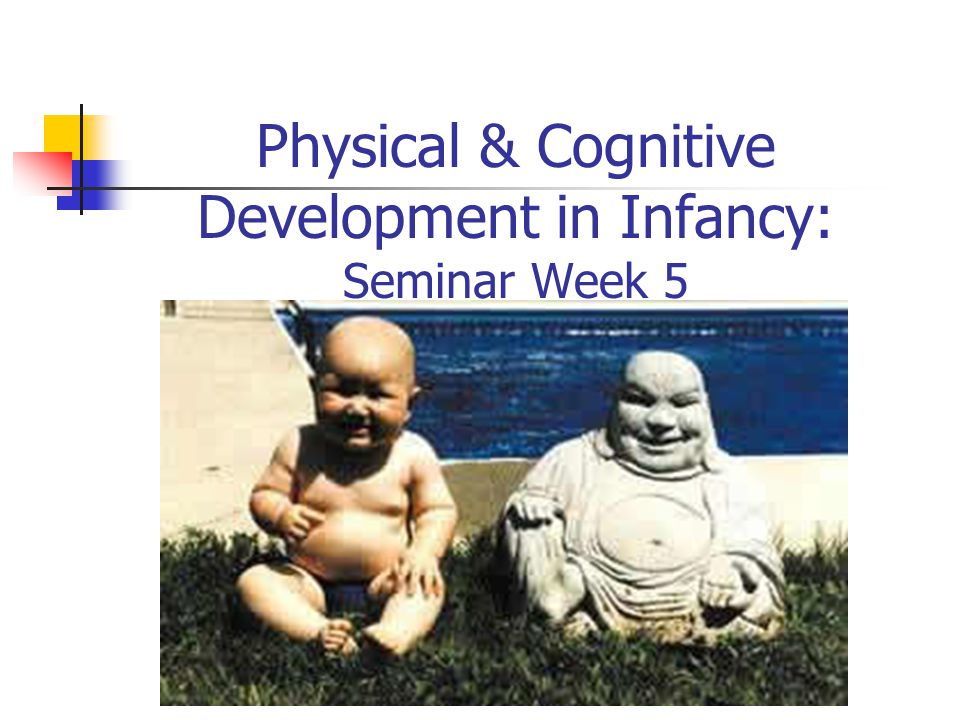 Physical & Cognitive Development in Infancy: Seminar Week 5
