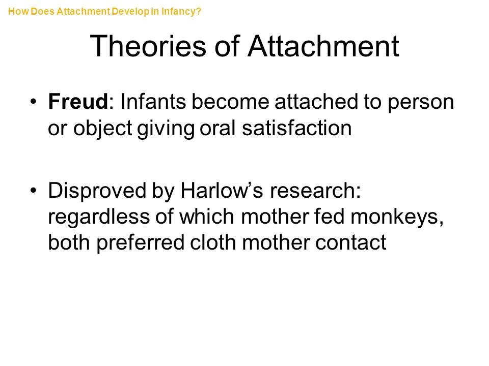 Theories of Attachment Freud: Infants become attached to person or object giving oral satisfaction Disproved by Harlow's research: regardless of which mother fed monkeys, both preferred cloth mother contact How Does Attachment Develop in Infancy?