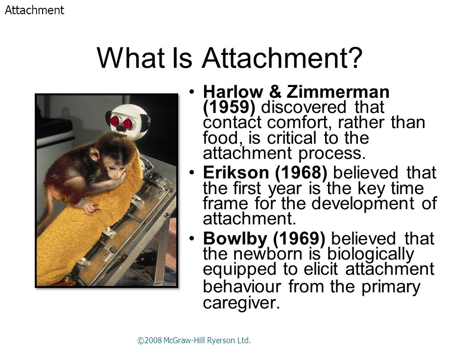 What Is Attachment? Harlow & Zimmerman (1959) discovered that contact comfort, rather than food, is critical to the attachment process. Erikson (1968)
