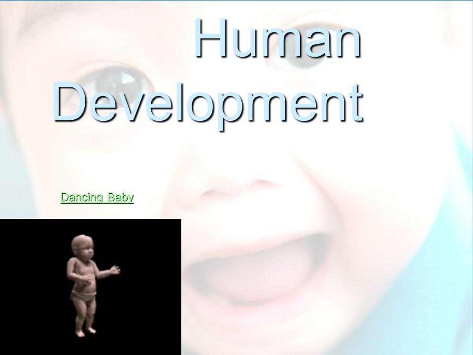 Human Development Dancing Baby Dancing Baby