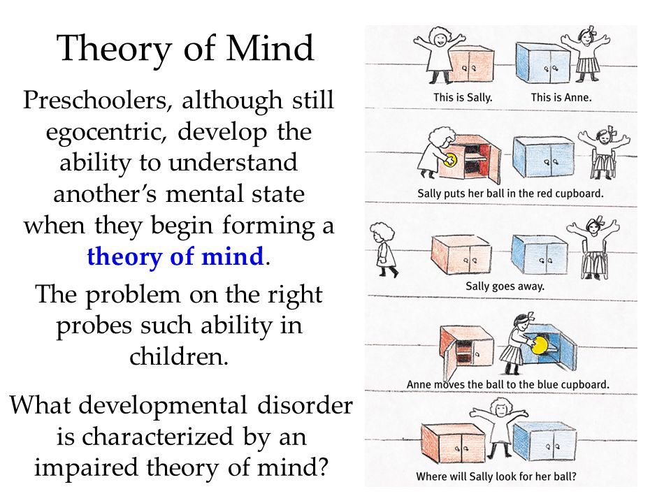 Theory of Mind Preschoolers, although still egocentric, develop the ability to understand another's mental state when they begin forming a theory of mind.