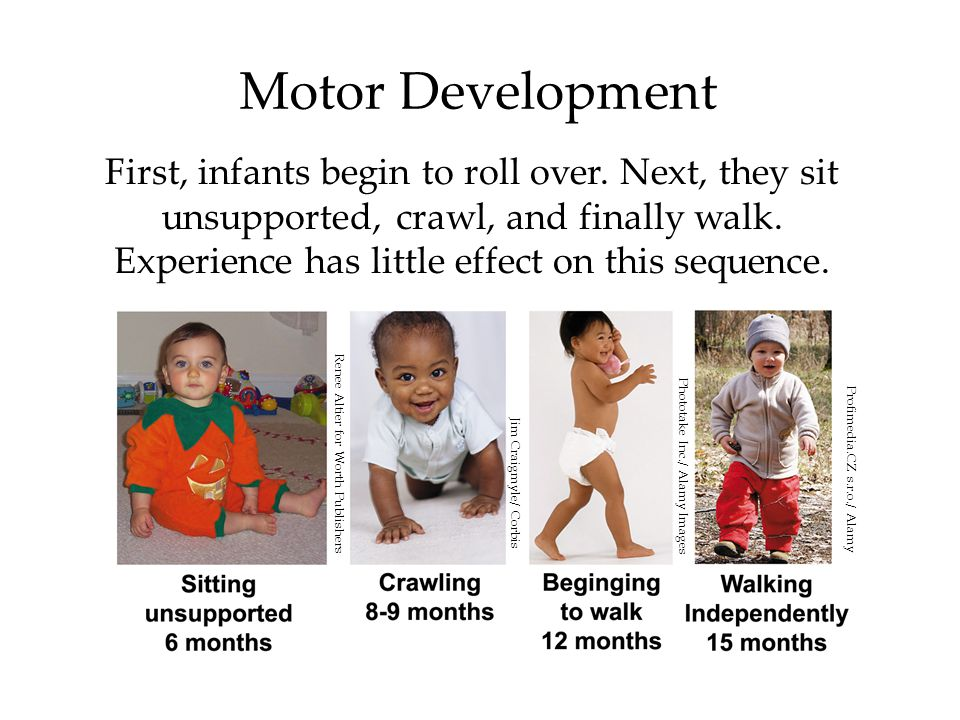 Motor Development First, infants begin to roll over.