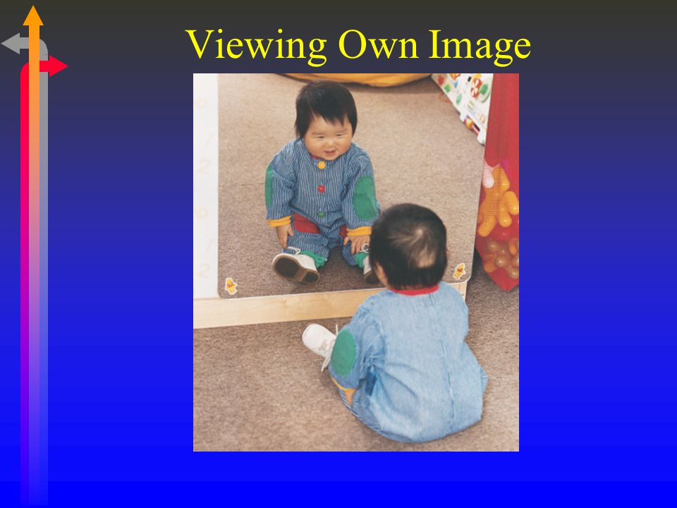 Viewing Own Image