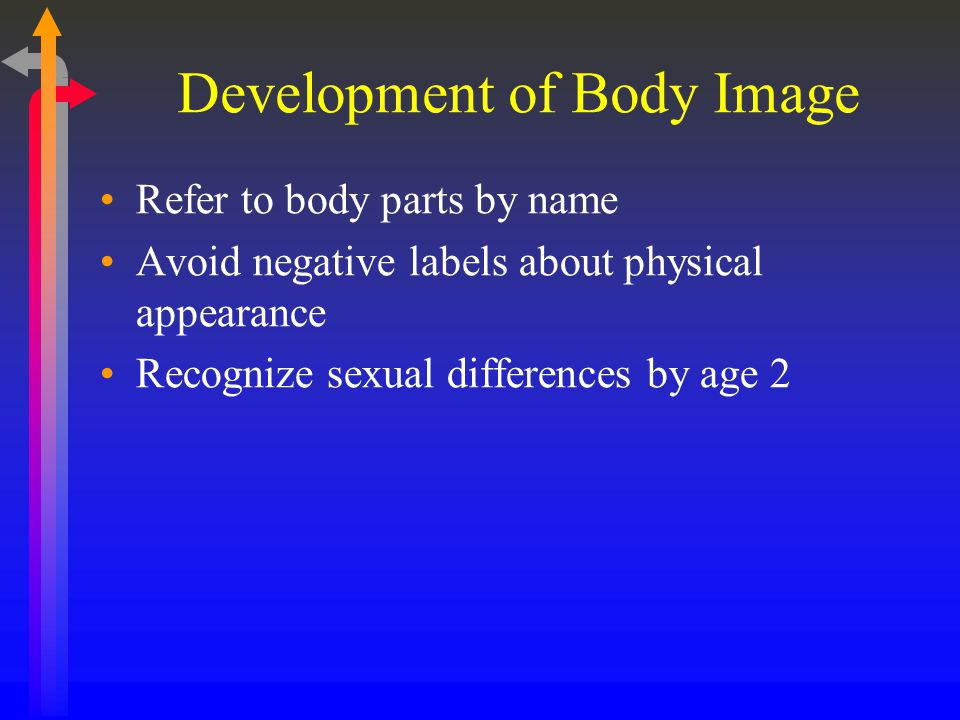 Development of Body Image Refer to body parts by name Avoid negative labels about physical appearance Recognize sexual differences by age 2