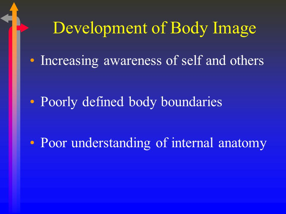 Development of Body Image Increasing awareness of self and others Poorly defined body boundaries Poor understanding of internal anatomy