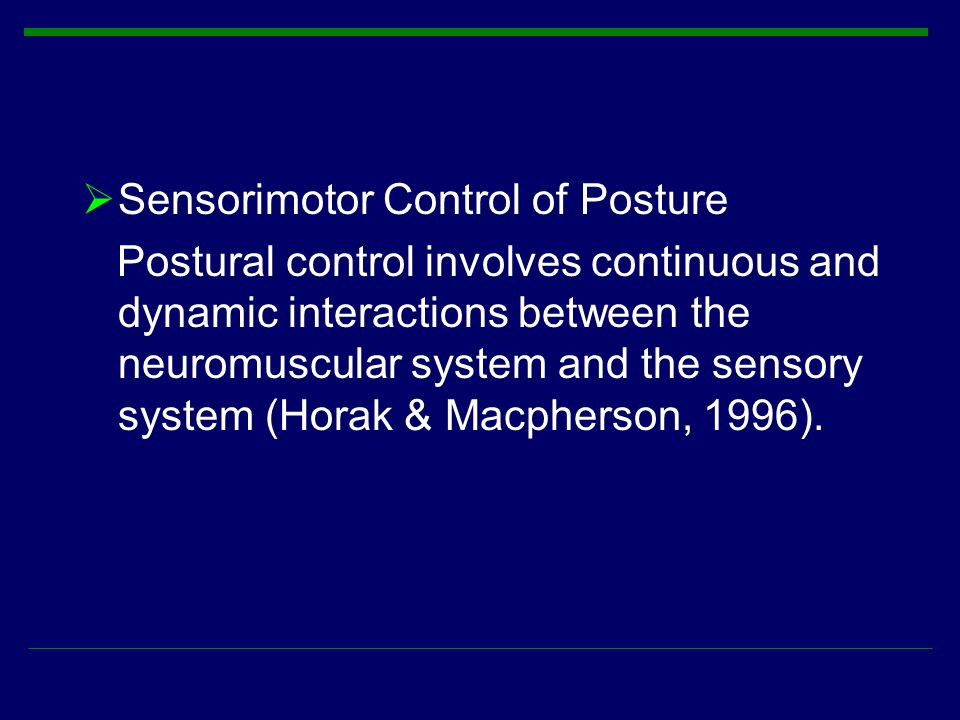  Sensorimotor Control of Posture Postural control involves continuous and dynamic interactions between the neuromuscular system and the sensory syste