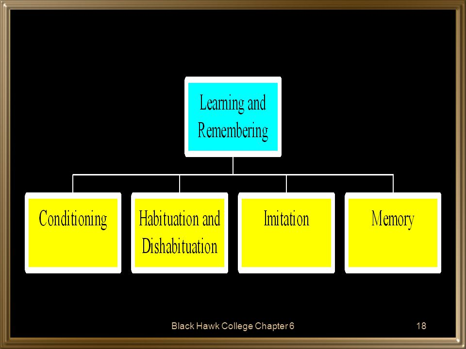 Black Hawk College Chapter 619 Conditioning Both classical and operant conditioning have been demonstrated to occur in infants.