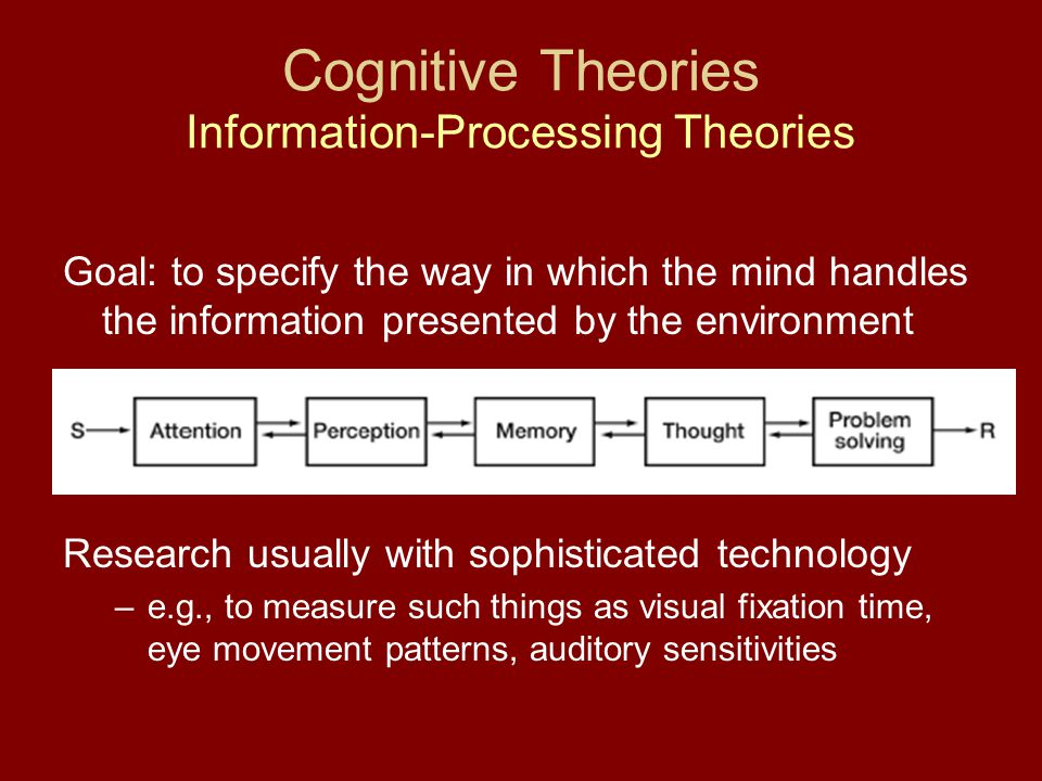 Cognitive Theories Information-Processing Theories Goal: to specify the way in which the mind handles the information presented by the environment Research usually with sophisticated technology –e.g., to measure such things as visual fixation time, eye movement patterns, auditory sensitivities
