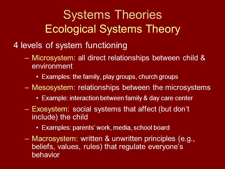 4 levels of system functioning –Microsystem: all direct relationships between child & environment Examples: the family, play groups, church groups –Me