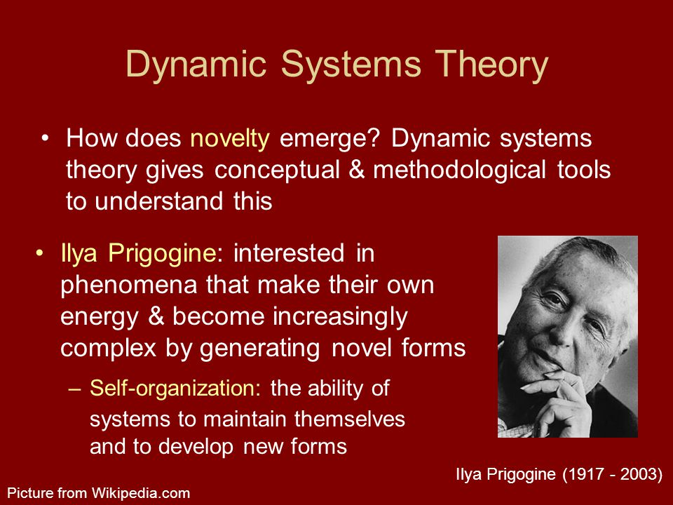 Dynamic Systems Theory How does novelty emerge.