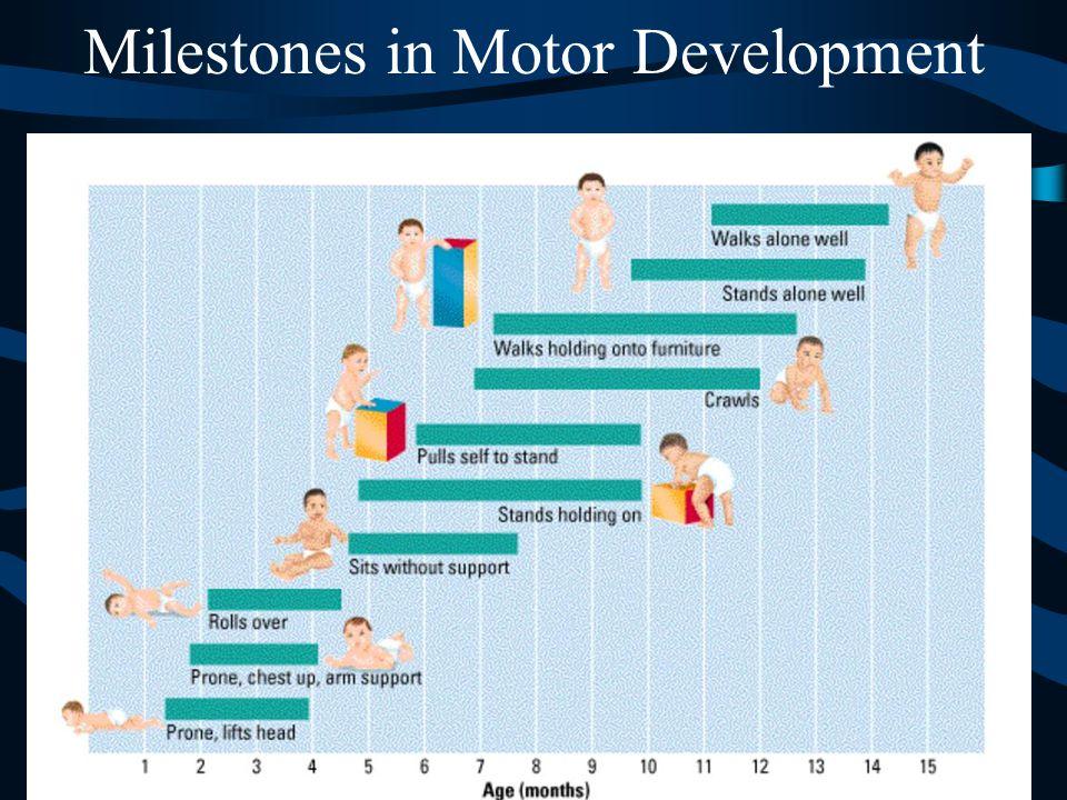Milestones in Motor Development