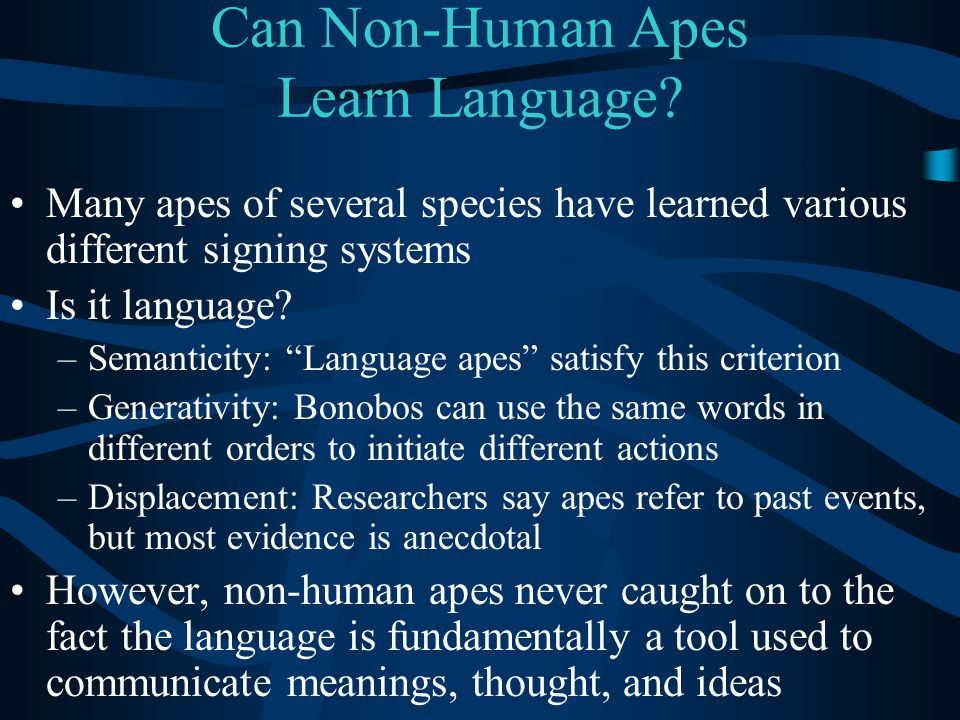 """Can Non-Human Apes Learn Language? Many apes of several species have learned various different signing systems Is it language? –Semanticity: """"Language"""