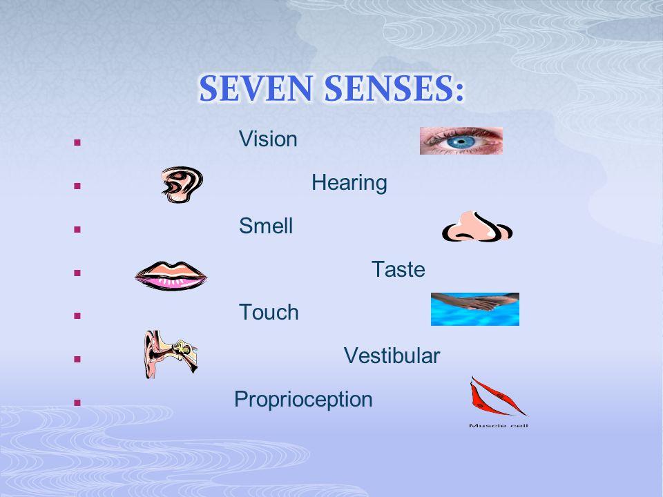 Vision Hearing Smell Taste Touch Vestibular Proprioception