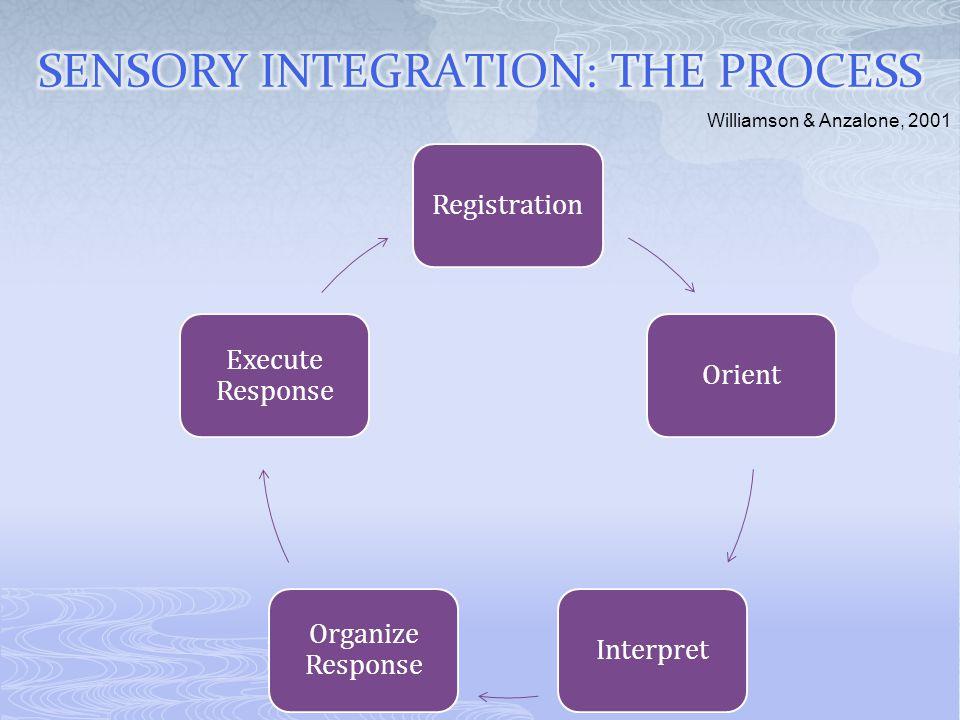 RegistrationOrientInterpret Organize Response Execute Response Williamson & Anzalone, 2001