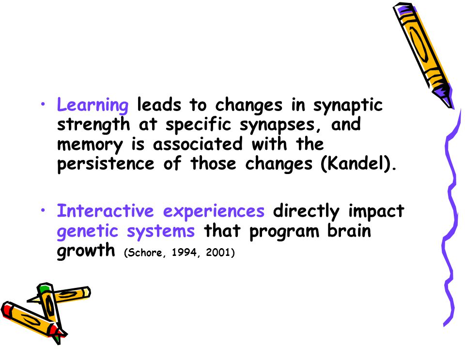 Learning leads to changes in synaptic strength at specific synapses, and memory is associated with the persistence of those changes (Kandel).