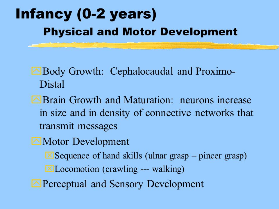 Infancy (0-2 years) Physical and Motor Development yBody Growth: Cephalocaudal and Proximo- Distal yBrain Growth and Maturation: neurons increase in s