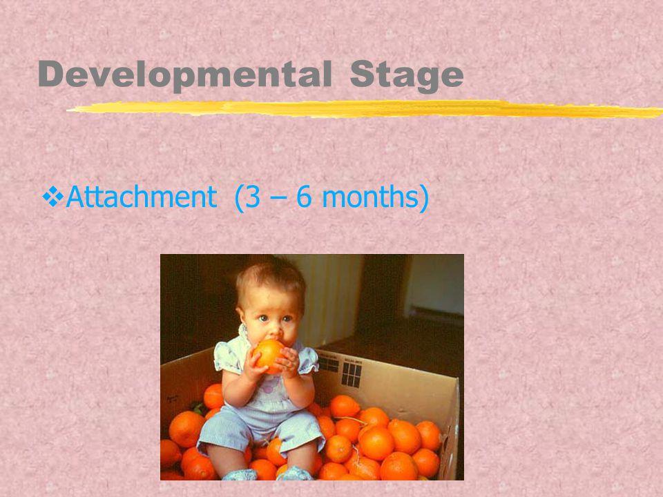 Developmental Stage  Attachment (3 – 6 months)