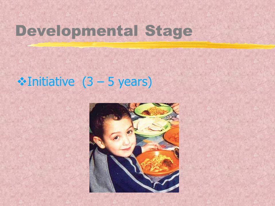 Developmental Stage  Initiative (3 – 5 years)