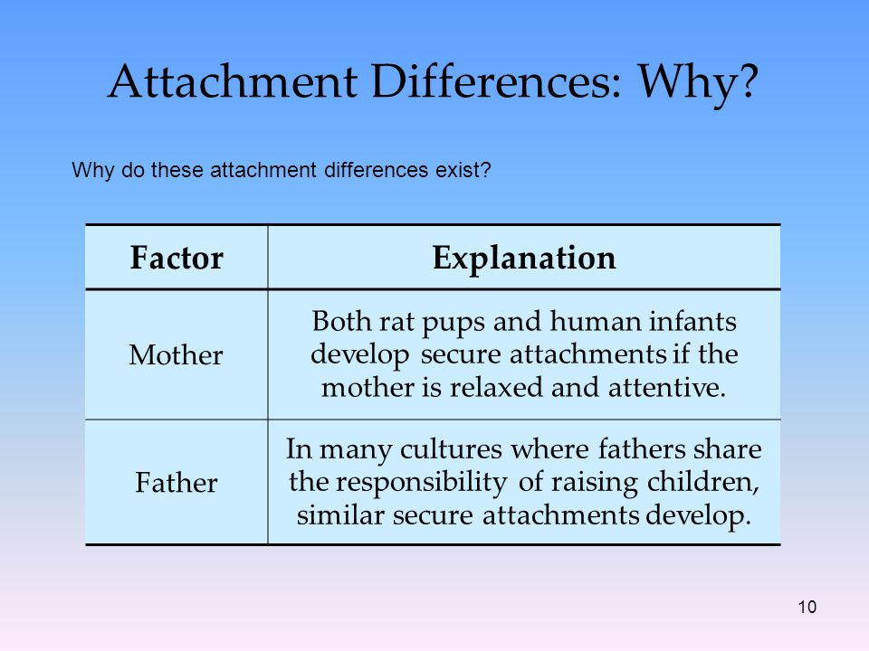 10 Attachment Differences: Why. Why do these attachment differences exist.