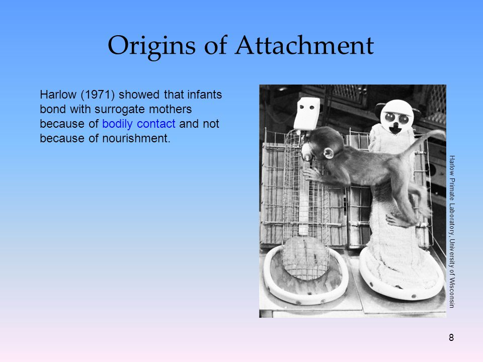 8 Origins of Attachment Harlow (1971) showed that infants bond with surrogate mothers because of bodily contact and not because of nourishment.