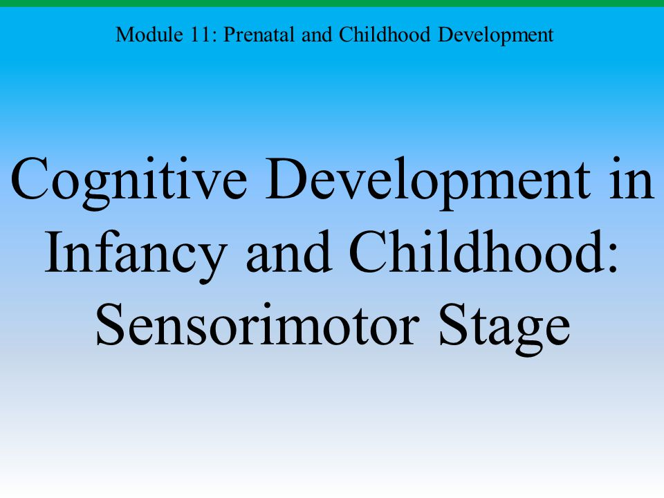 Cognitive Development in Infancy and Childhood: Sensorimotor Stage Module 11: Prenatal and Childhood Development