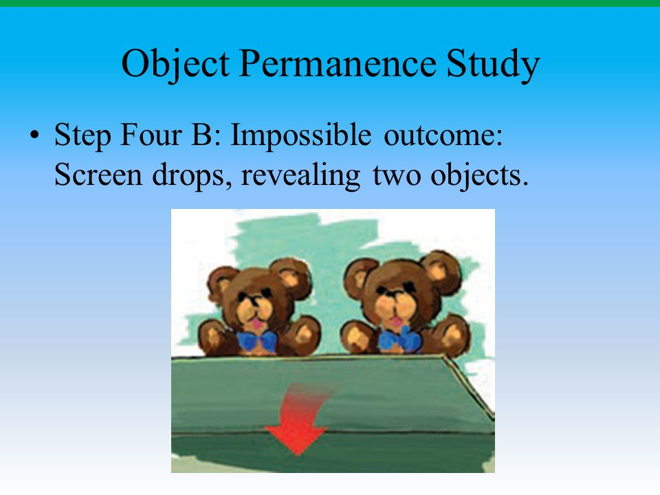 Object Permanence Study Step Four B: Impossible outcome: Screen drops, revealing two objects.