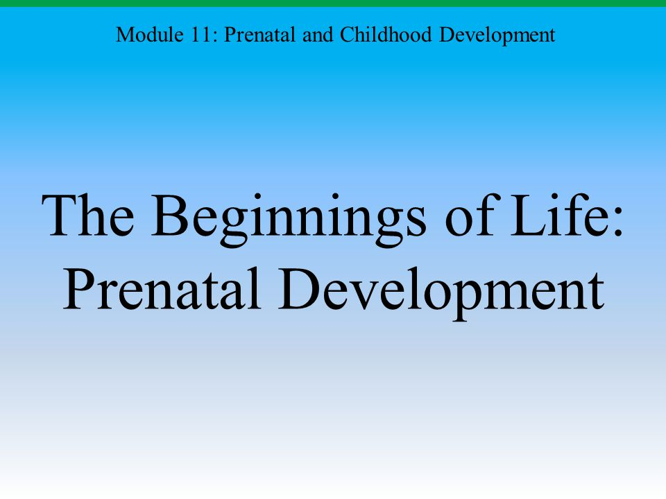 The Beginnings of Life: Prenatal Development Module 11: Prenatal and Childhood Development