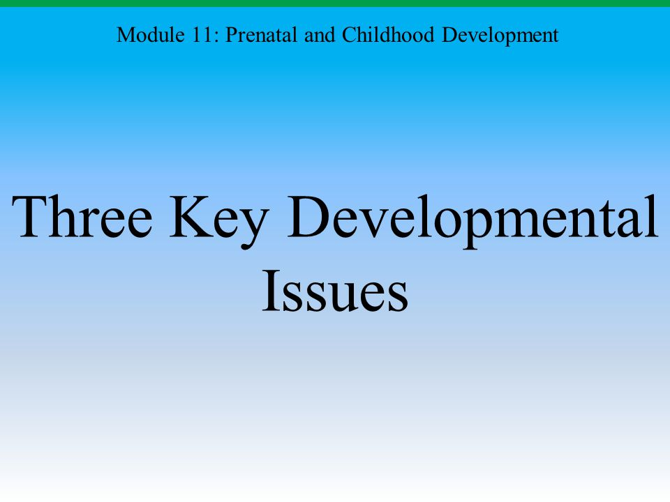 Three Key Developmental Issues Module 11: Prenatal and Childhood Development