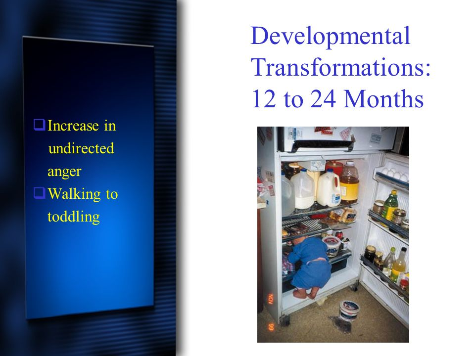  Increase in undirected anger  Walking to toddling Developmental Transformations: 12 to 24 Months