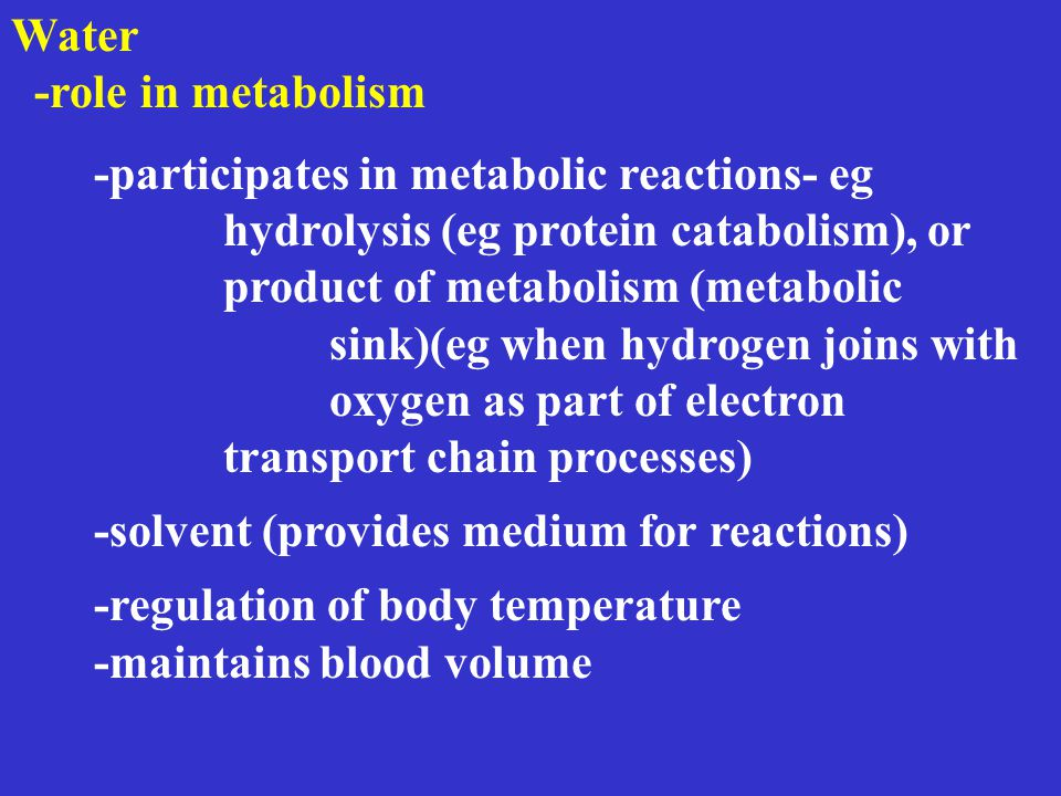 Nutrition metabolism throughout the life cycle Early Childhood energy and nutrient needs energy 1 year 1000 kcal/day 3 years-1300 kcal/day 10 years-2000 kcal/day