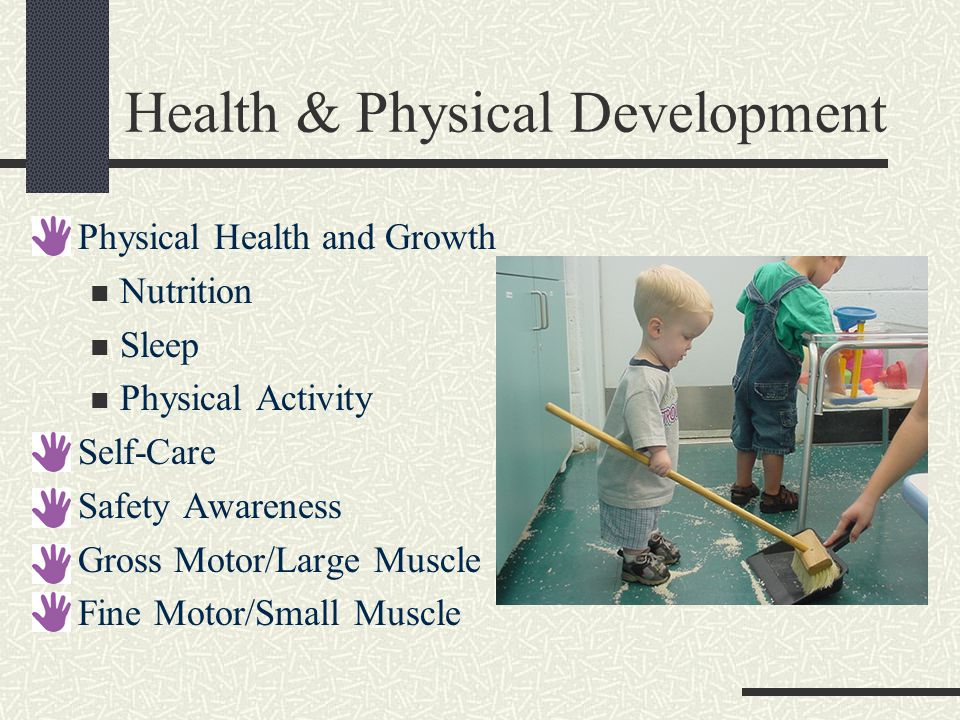 Health & Physical Development Physical Health and Growth Nutrition Sleep Physical Activity Self-Care Safety Awareness Gross Motor/Large Muscle Fine Motor/Small Muscle