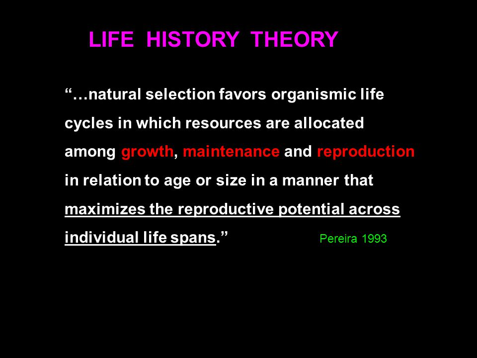 "LIFE HISTORY THEORY ""…natural selection favors organismic life cycles in which resources are allocated among growth, maintenance and reproduction in r"