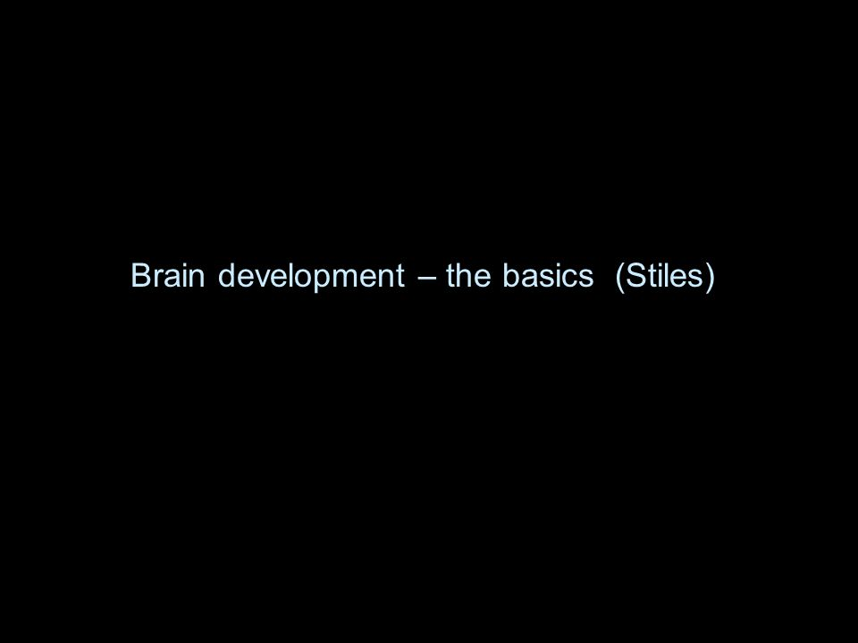 Brain development – the basics (Stiles)