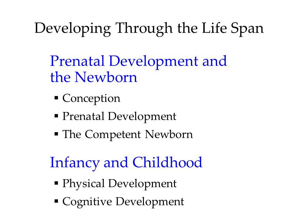 Developing Through the Life Span Prenatal Development and the Newborn  Conception  Prenatal Development  The Competent Newborn Infancy and Childhoo
