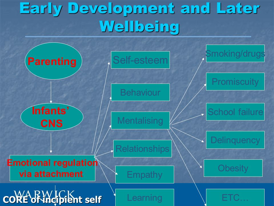 The Importance of Attachment Secure base – to explore the world Secure base – to explore the world Prototype for later relations – internal working model is a 'representational model' of self and self with other Prototype for later relations – internal working model is a 'representational model' of self and self with other Provide child with expectations in relation to self and others Provide child with expectations in relation to self and others