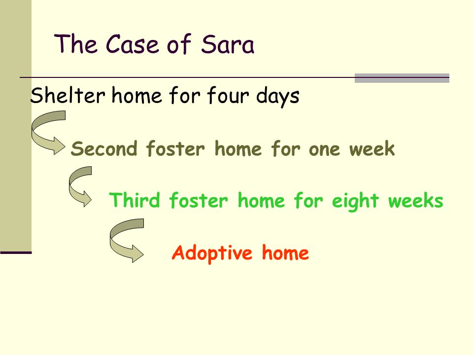 The Case of Sara Shelter home for four days Second foster home for one week Third foster home for eight weeks Adoptive home