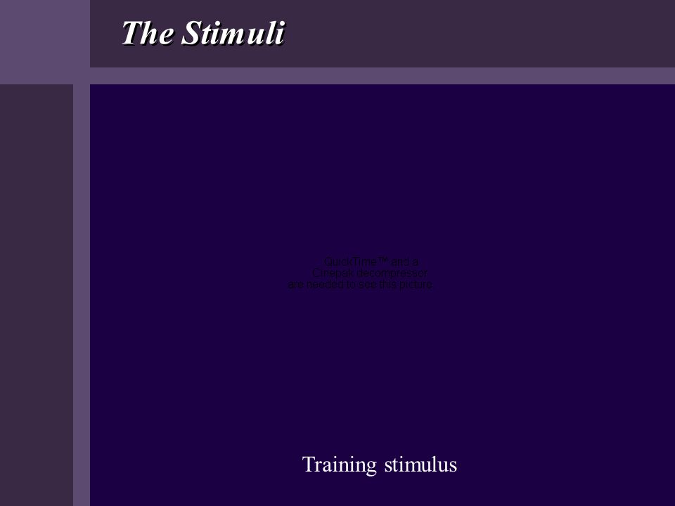 The Stimuli Training stimulus