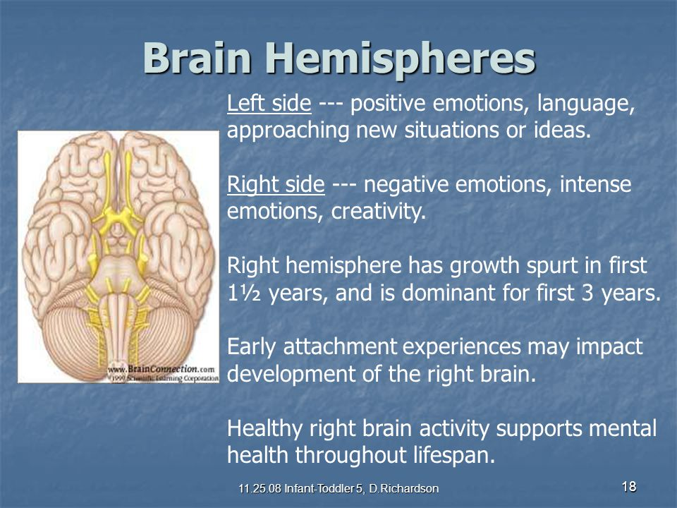18 Brain Hemispheres Left side --- positive emotions, language, approaching new situations or ideas. Right side --- negative emotions, intense emotion