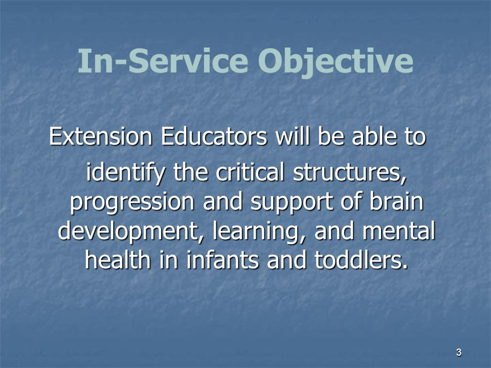 In-Service Objective 3 Extension Educators will be able to identify the critical structures, progression and support of brain development, learning, a