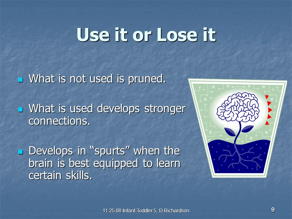 9 Use it or Lose it What is not used is pruned. What is not used is pruned. What is used develops stronger connections. What is used develops stronger