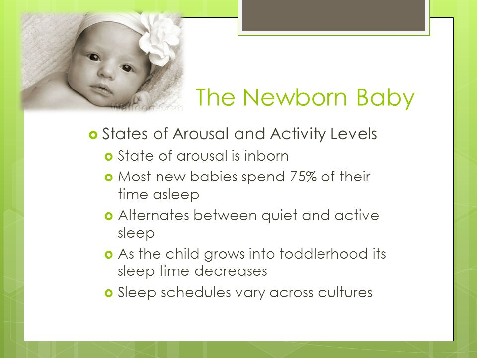 The Newborn Baby  States of Arousal and Activity Levels  State of arousal is inborn  Most new babies spend 75% of their time asleep  Alternates be
