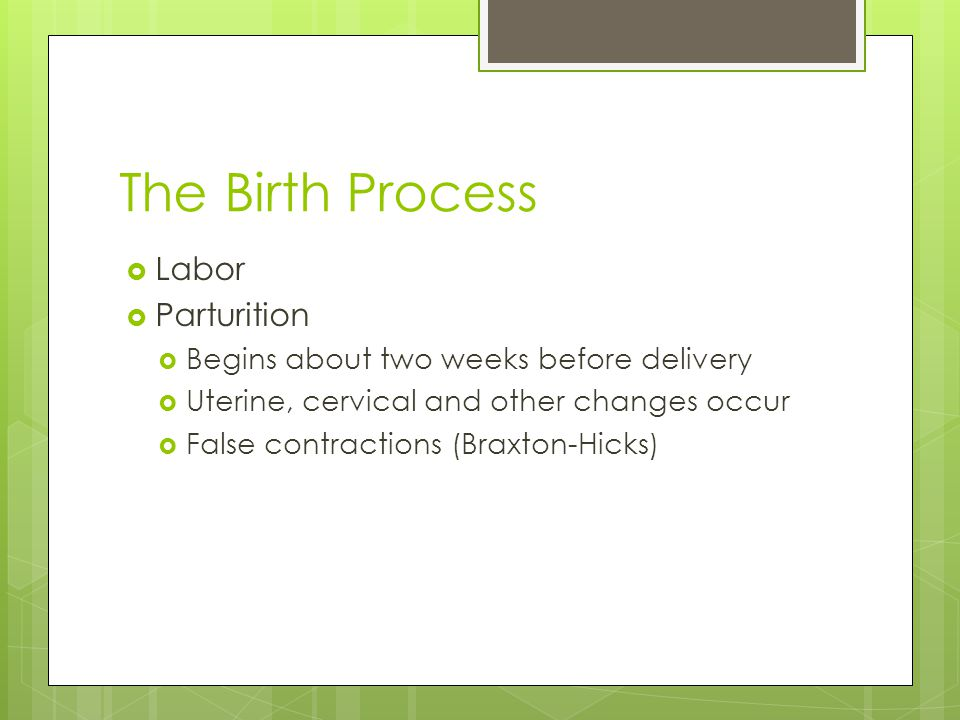 The Birth Process  Labor  Parturition  Begins about two weeks before delivery  Uterine, cervical and other changes occur  False contractions (Bra
