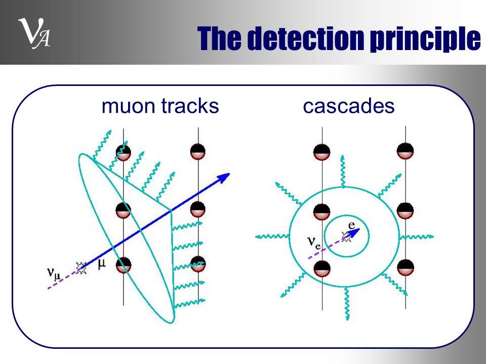 A The detection principle muon tracks cascades